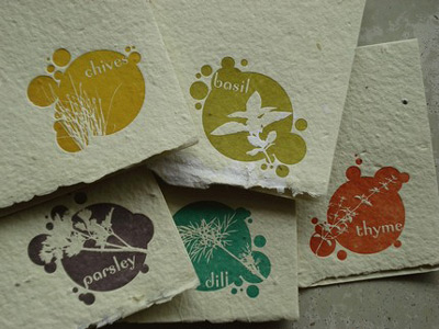 Eco Friendly Porridge Papers Plantable Herb Seed Cards