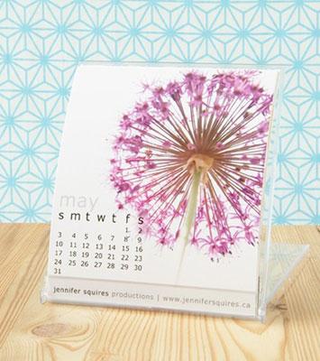 Jennifer Squires 2009 Calendar