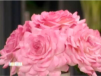 How to make paper roses martha stewart